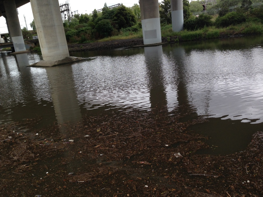 Moonee Ponds Creek near Arden Street